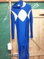 Power Ranger - Blue